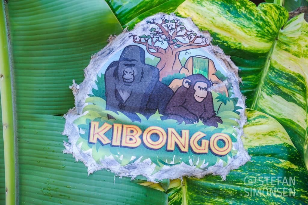 Logo der neuen Schimpansen-Aussenanlage Kibongo im Zoo Hannover