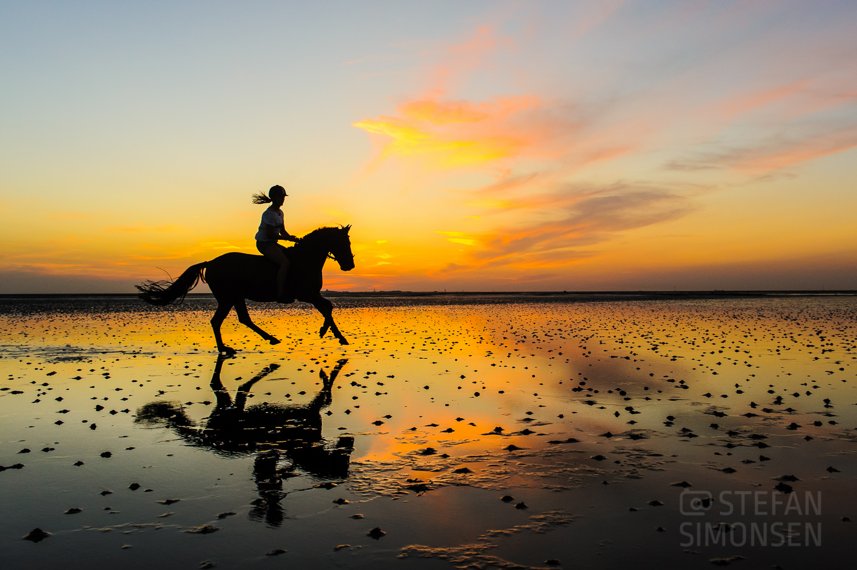 Eine junge Reiterin galoppiert im Juli 2013 mit ihrem Pferd bei Sonnenuntergang durch das Watt bei Sahlenburg und spiegelt sich dabei im zurückgebliebenen Wasser